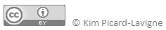 Bas de page article blogue_Kim Picard-Lavigne