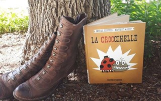 Croccinelle visuel